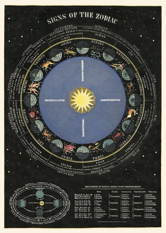 Cavallini Poster et papier cadeau Motif /étoiles