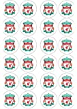 24 x Edible Liverpool FC Edible Wafer / Icing Cup Cake Toppers Happy Birthday (wafer)