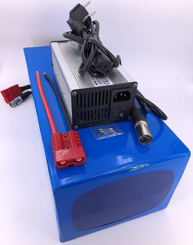 72V 40Ah 2880Wh Akkupack Pedelec E-Bike Scooter Lithium-Ionen Batterie Battery incl 4A Ladeger/ät 50A BMS