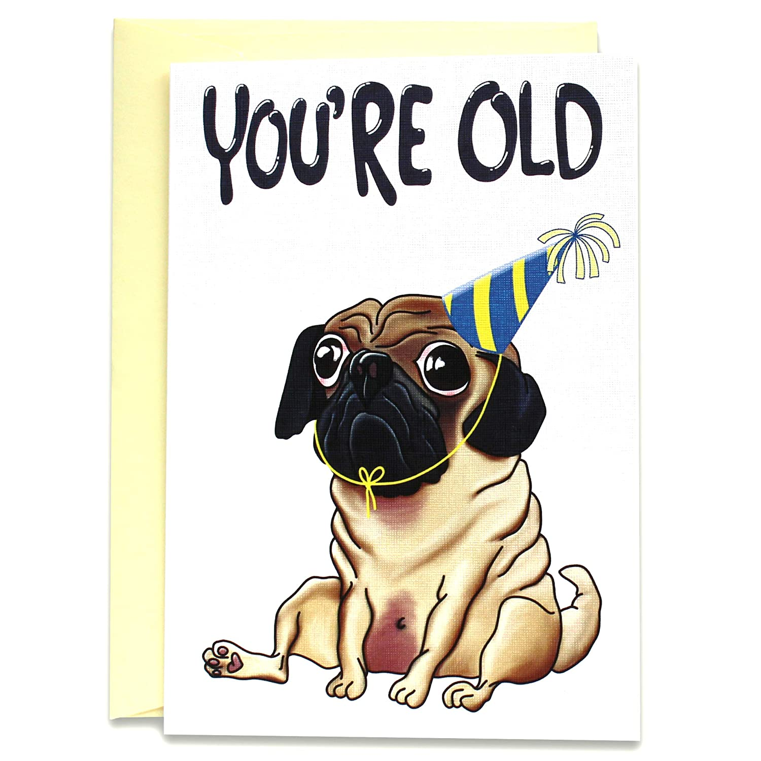 Pugs Funny Birthday Card Unique Pug Gift Set of 5