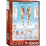 Eurographics the Human Body Puzzle (1000 Pieces)