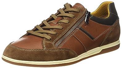 8ef3a7ae8f9789 Geox Herren U Renan C Sneaker  Amazon.de  Schuhe   Handtaschen
