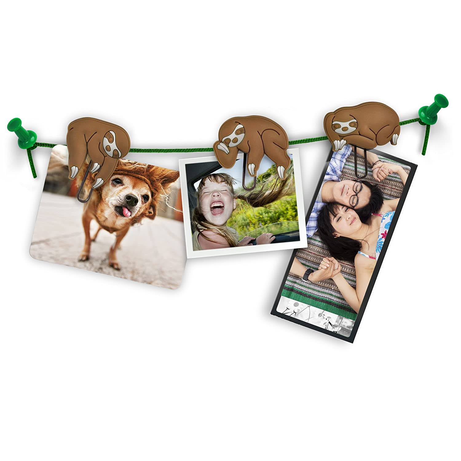 amazon com fred sloths on a vine picture hangers set of 6 home