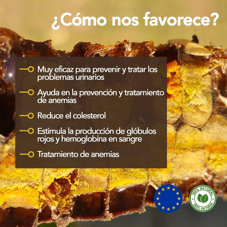 Pan de abeja x 200 g. Perga, Ambrosía, Polen de abeja lacto-fermentado 100% natural - crudo.