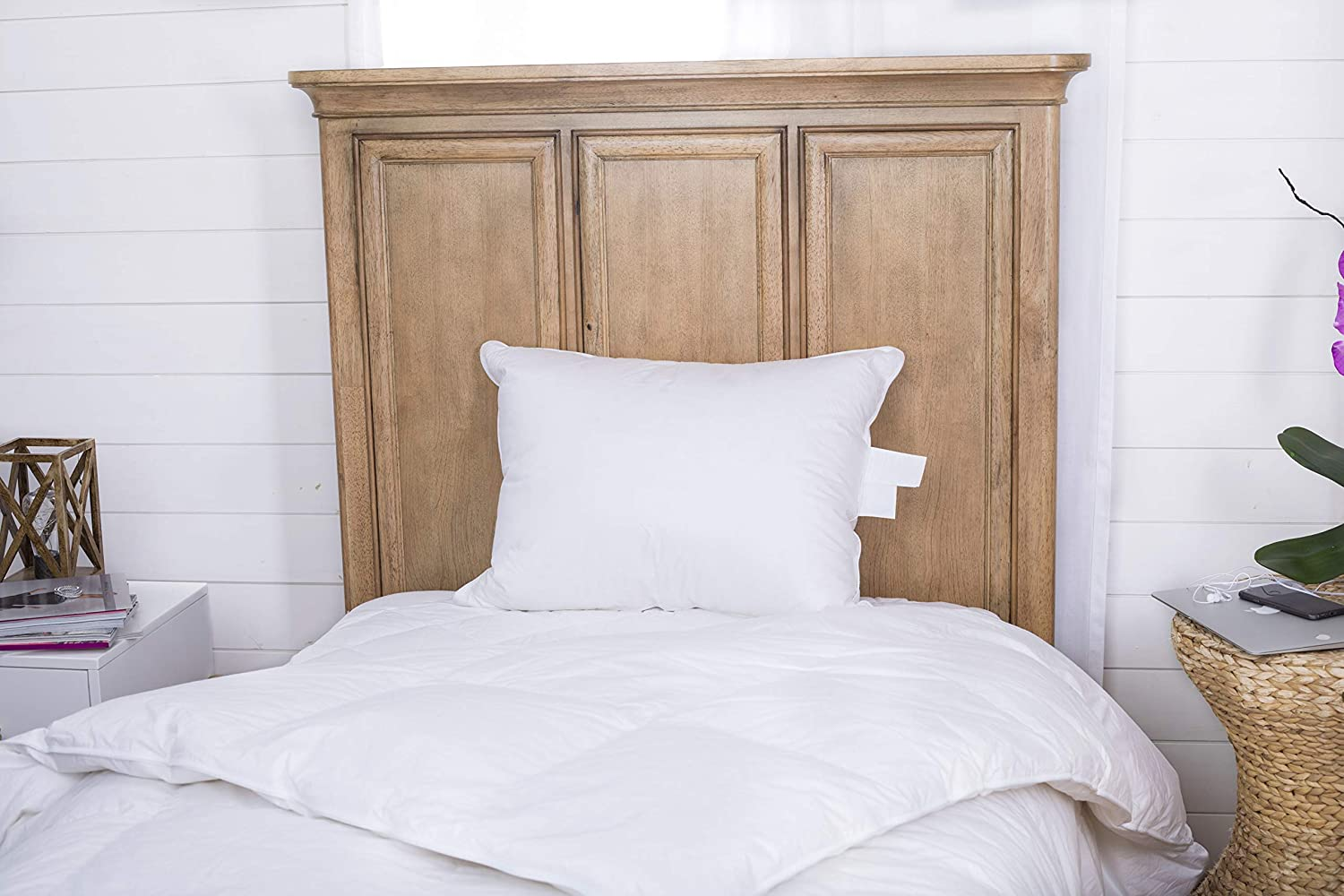 Continental Bedding P5050-S Better Down & Feather Blend Pillow-50% White Goose Down & 50% Feather, Standard Size