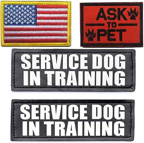 Parche de perro de servicio en entrenamiento/preguntar a mascota ...
