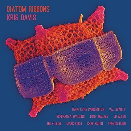 Buy Kris Davis - Diatom Ribbons New or Used via Amazon