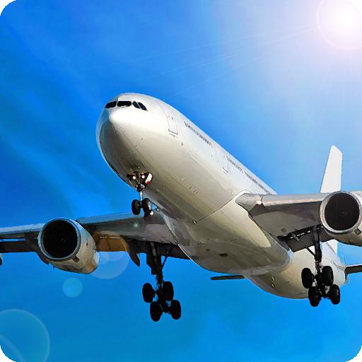 Avion Flight Simulator TM 2015
