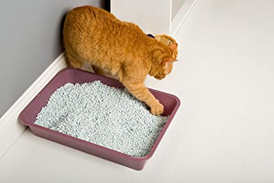 Hartz Multi-Cat Lightweight Recycled Clumping Paper Cat Litter
