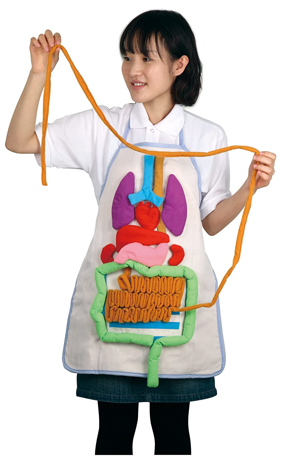 Artec 8734 Anatomy Apron Pack of 2 Puzzles