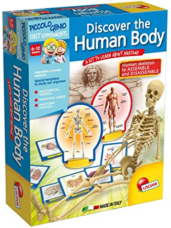 Piccolo Genio Discovery The Human Body Game: Amazon.co.uk: Toys & Games