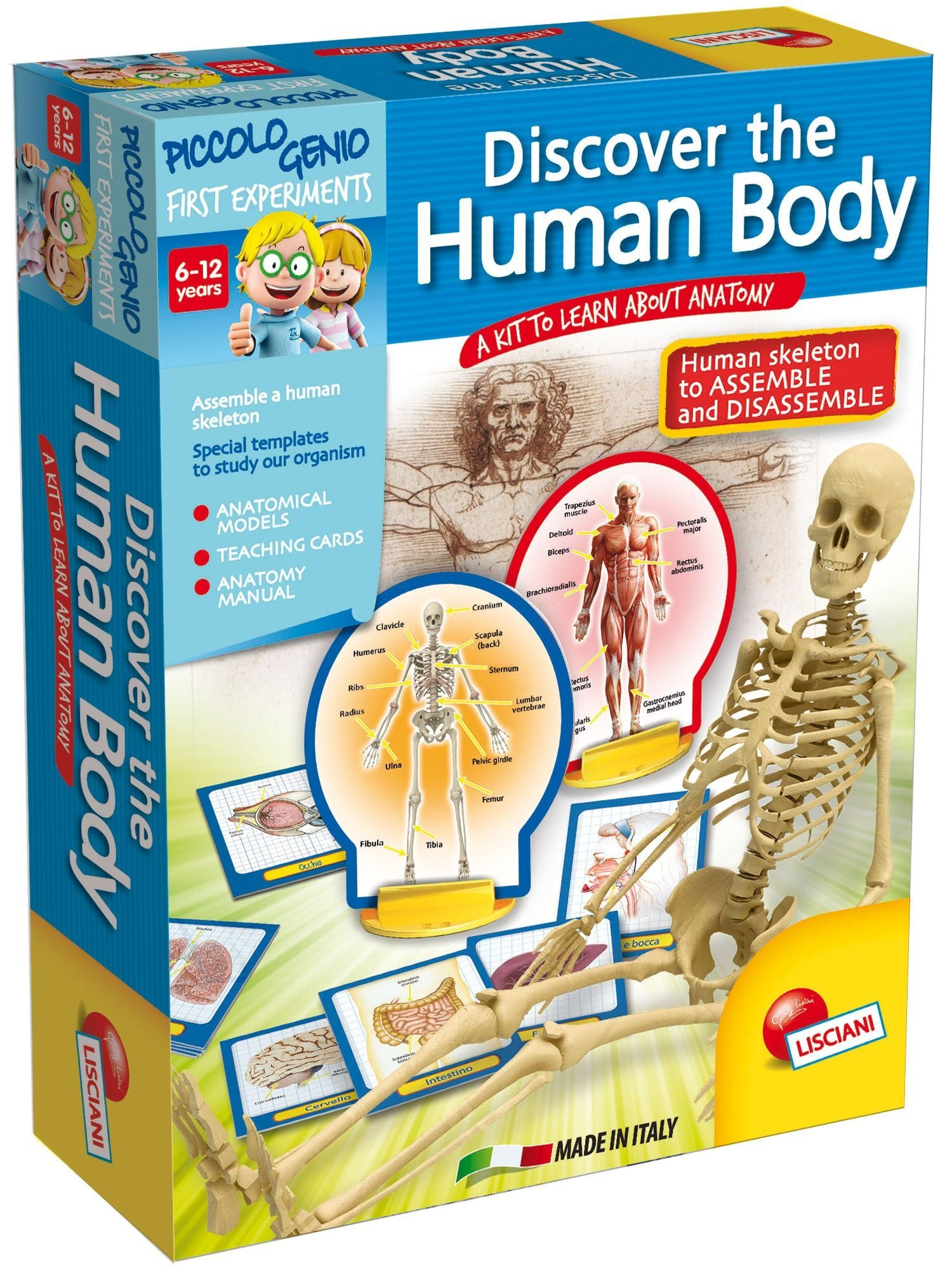 Piccolo Genio Discovery The Human Body Game