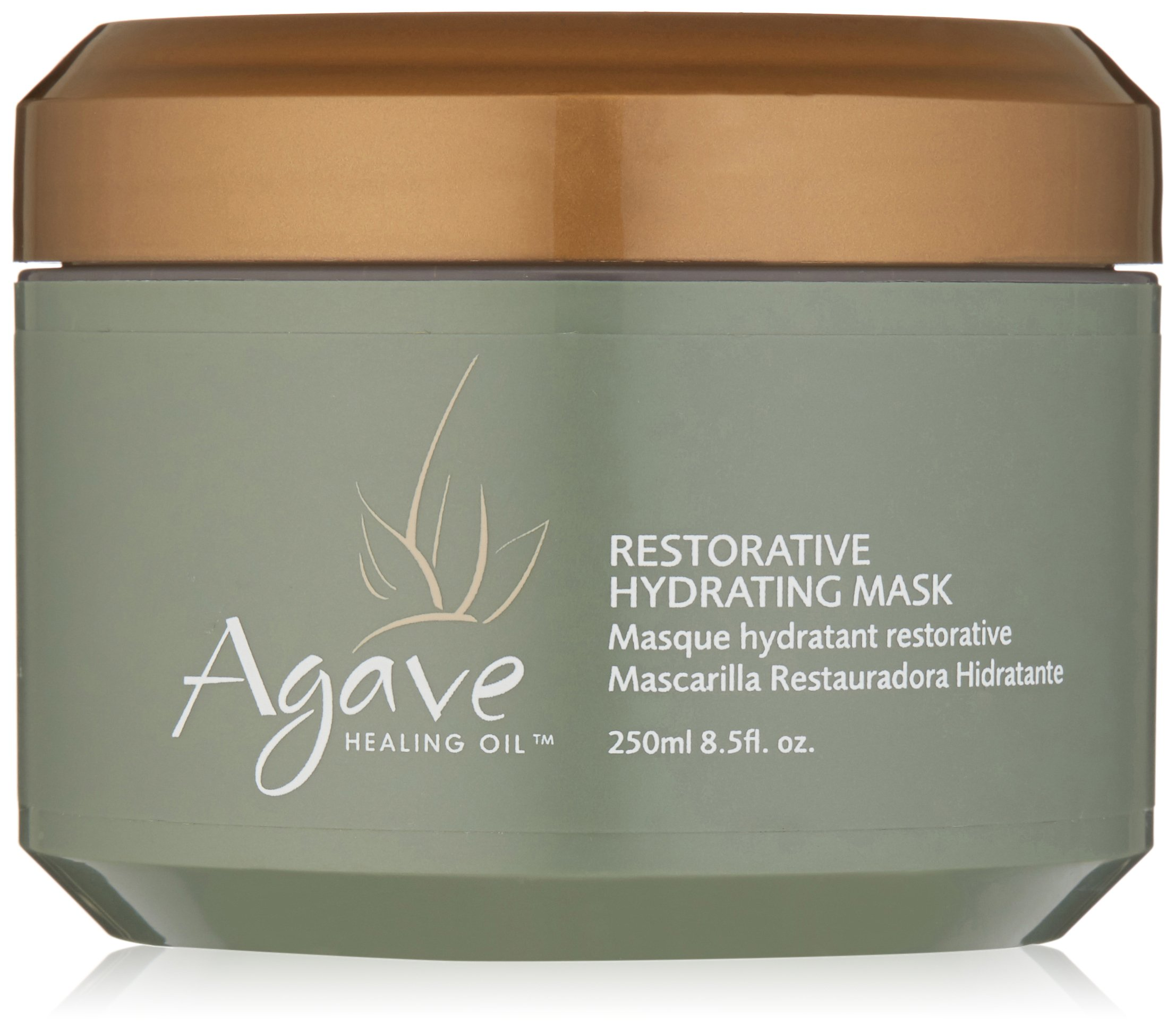 Amazon.com: Agave HEALING OIL Treatment: Luxury Beauty