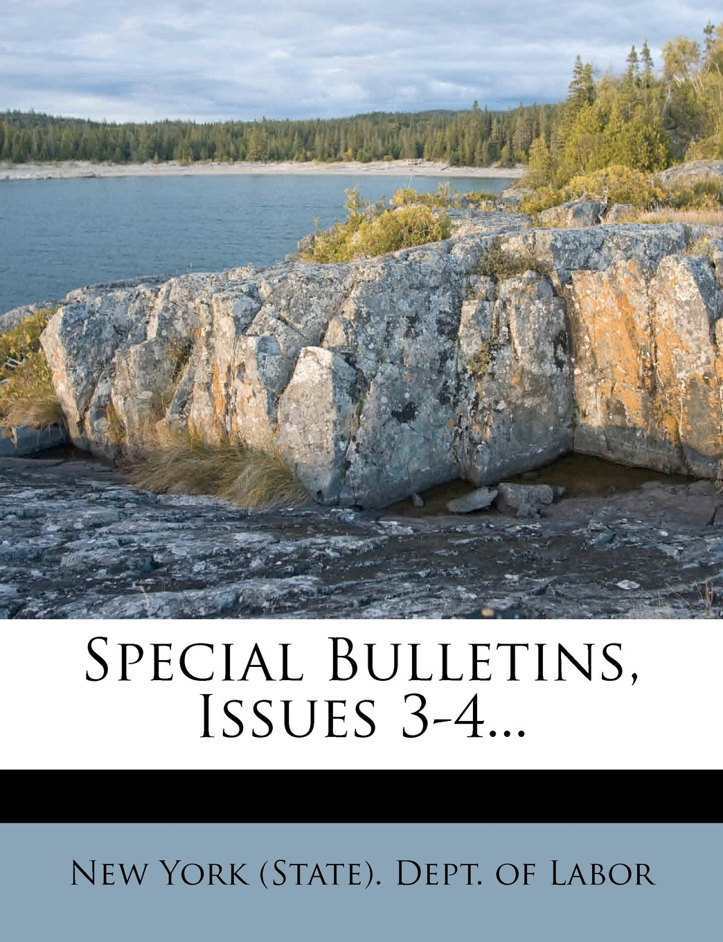 Read Online Special Bulletins, Issues 3-4... PDF