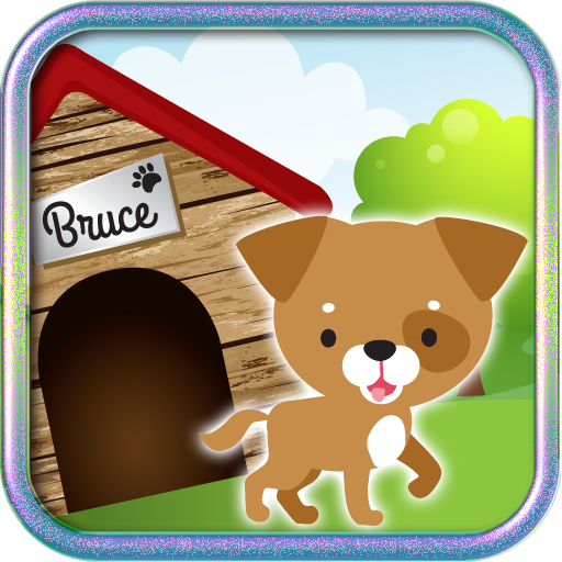 [Bruce Chihuahua Fiesta] (Fun Dress Up Games For Adults)