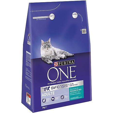 Purina ONE – Pienso para Gatos Adulto Talla & Sabor Elegir 1,5 kg –