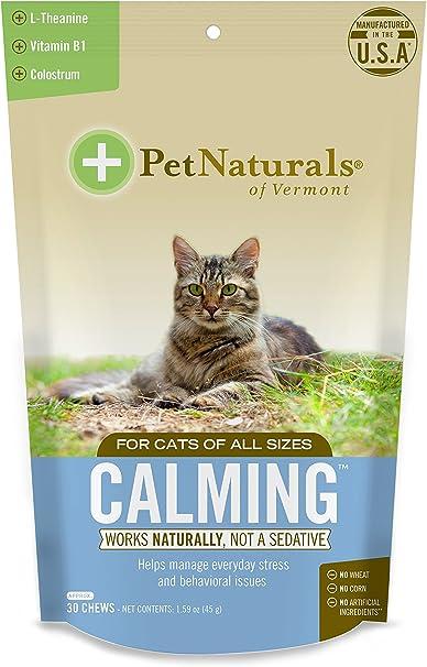 Pet Naturals of Vermont – Calmante para Gatos, Suplemento de Apoyo conductual, 30 masticables tamaño mordida: Amazon.es: Productos para mascotas