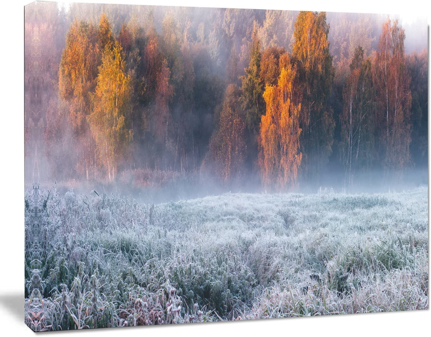 Amazon Com Designart Pt11295 20 12 Grey Hoarfrost Design By Winter Landscape Print Wall Artwork 20x12 12 H X 20 W X 1 D 1p Home Kitchen
