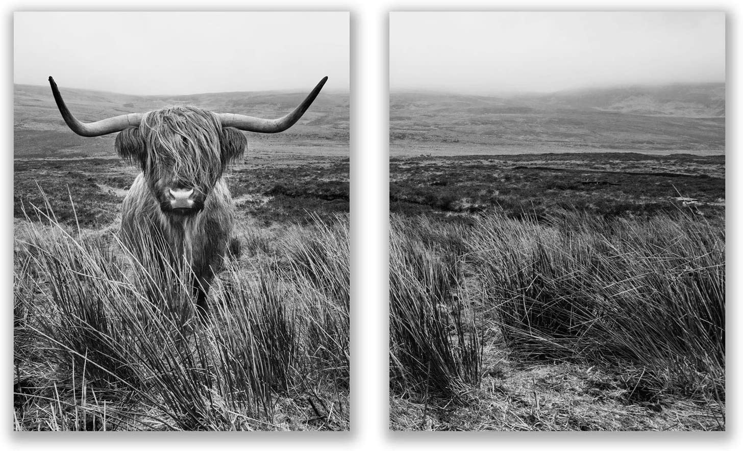 Highland Cow Prints - Set of 2 (8x10) Glossy Farm Wall Art Decor - Black and White Farmhouse Shaggy Scottish Barn Cow Photography