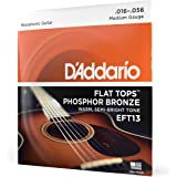 D'Addario EFT13 Flat Tops Phosphor Bronze Acoustic Guitar Strings