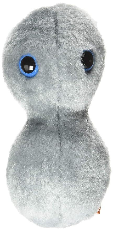 Amazon.com  GIANT MICROBES Clap - Gonorrhea (Neisseria gonorrhoeae) Plush  Toy  Giant Microbes  Toys   Games 229fb30f7