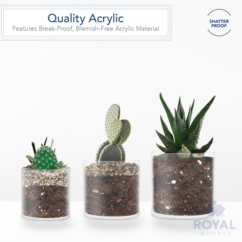 Royal Imports Jarrón de acrílico de flores con eje decorativo central para boda 6 x 6 x 6 Claro: Amazon.es: Hogar
