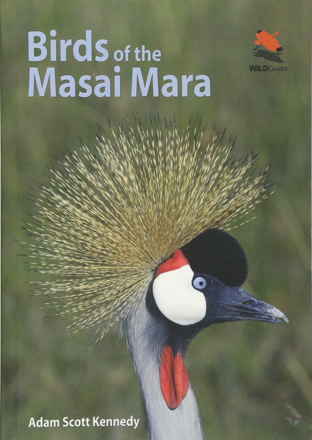 Birds Masai Princeton University WILDGuides