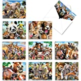 Assortment of 10 Funny Blank Note Cards Featuring Animals Being Goofy - 'Here's Looking at Zoo' Stationery Set of Greeting Ca