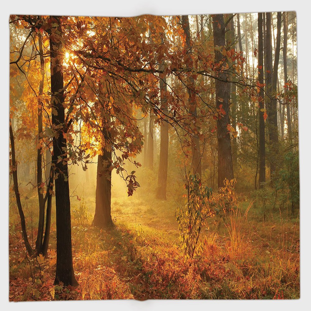 Cotton Microfiber Hand Towel,Fall Decor,Misty Autumn Forest with Rising Sun Early Morning in Foggy Woods Scenery,Orange Brown Green,for Kids, Teens, and Adults,One Side Printing