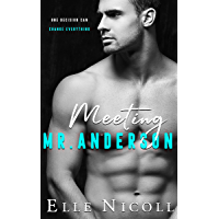 Meeting Mr Anderson (The Men Series Book 1)
