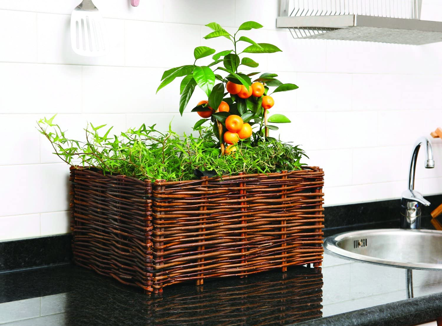 Catral 71080004 - huerto urbano kit planter, 100 x 40 x 40 cm ...
