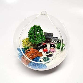 Pixie Glare Hanging Glass Terrarium Japanese Garden Miniature Kit DIY  (700 A)