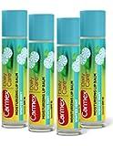 Winter Mint Carmex Daily Care Moisturizing Lip Balm SPF 15 -4 Pack