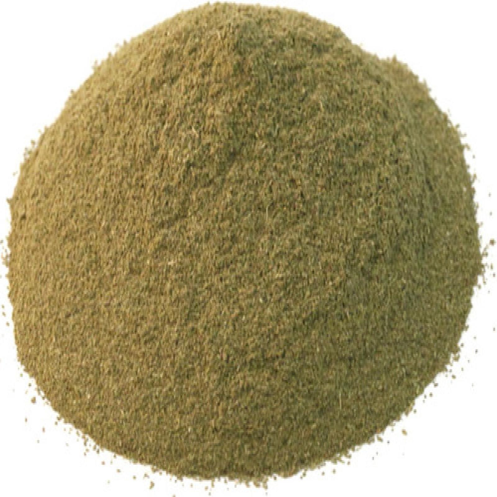 Basil Ground - 5.01 lb by Dylmine Health (Image #1)
