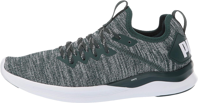 PUMA Women's Ignite Flash Evoknit Womens Running Shoes: Puma