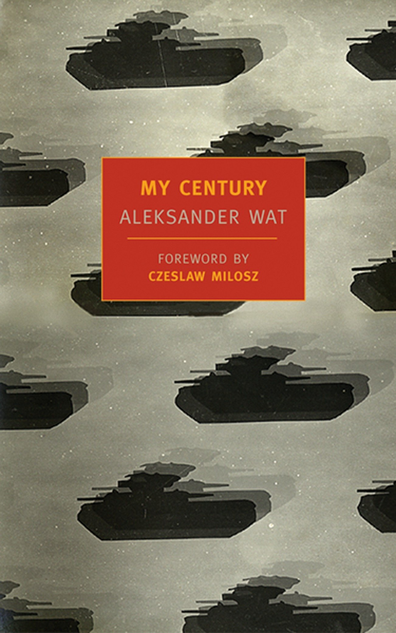 My Century (New York Review Books Classics) PDF