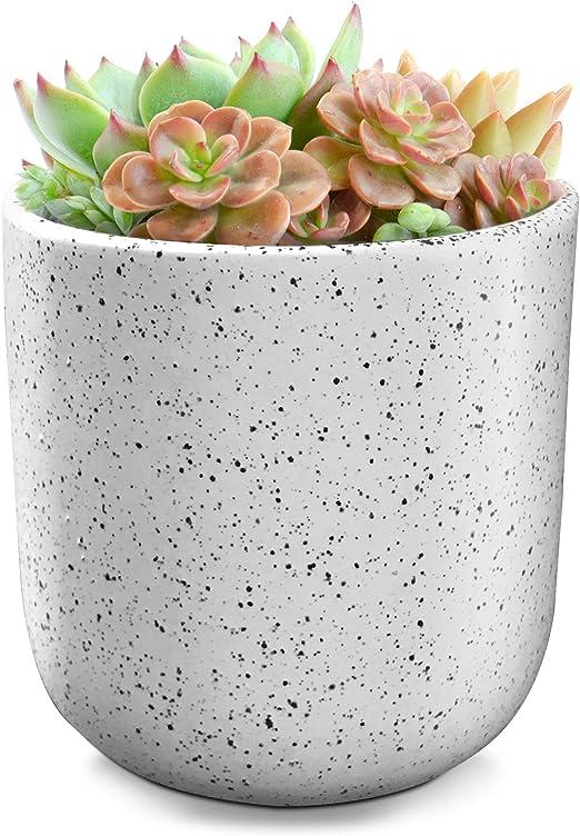 Maceta de flores – Maceta de jardín interior al aire libre de 4, 6 pulgadas de cerámica blanca para suculentas, plantas, cactus: Amazon.es: Jardín
