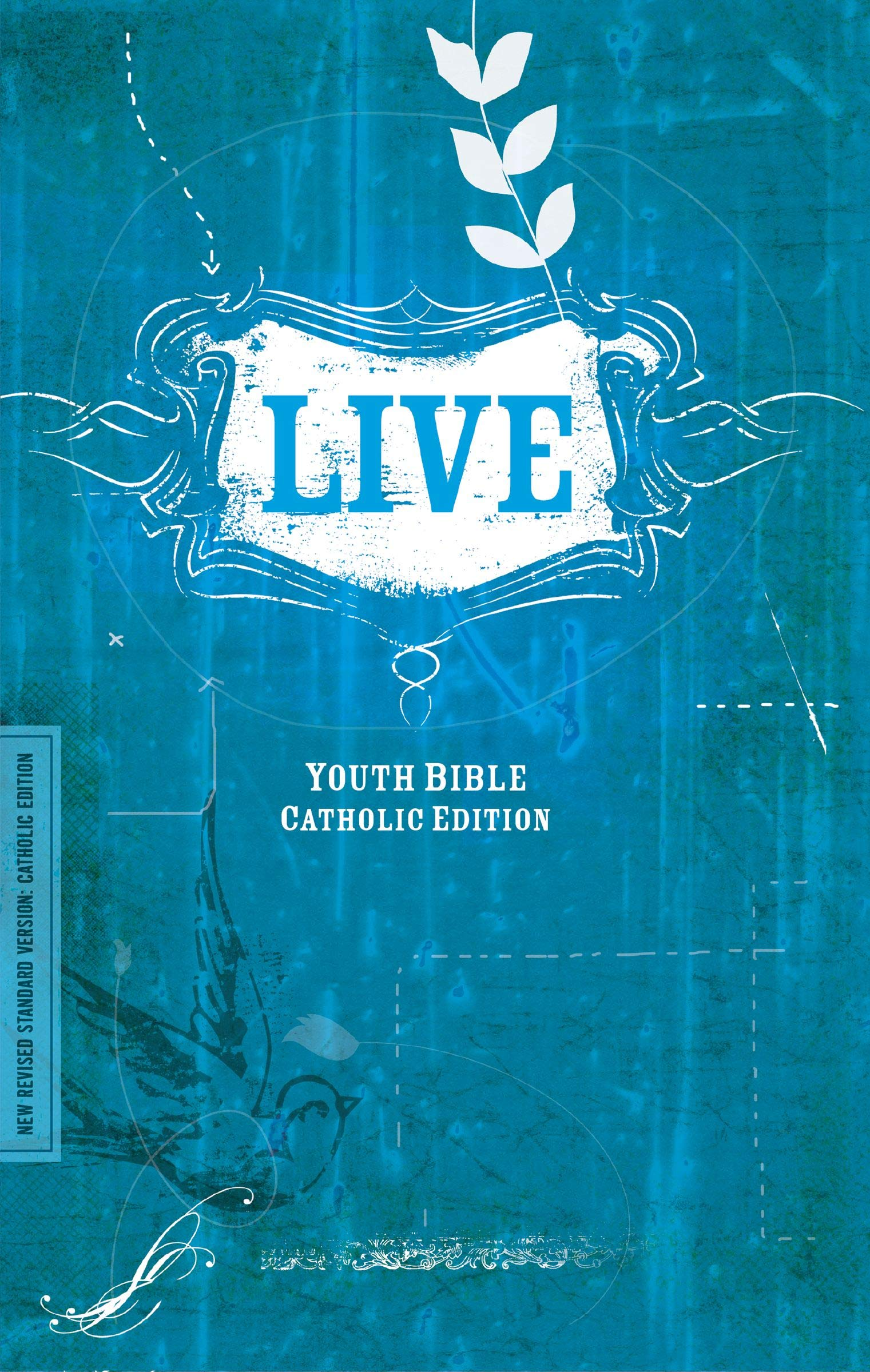 Download NRSV, LIVE, Catholic Edition, Paperback: Youth Bible, Catholic Edition pdf