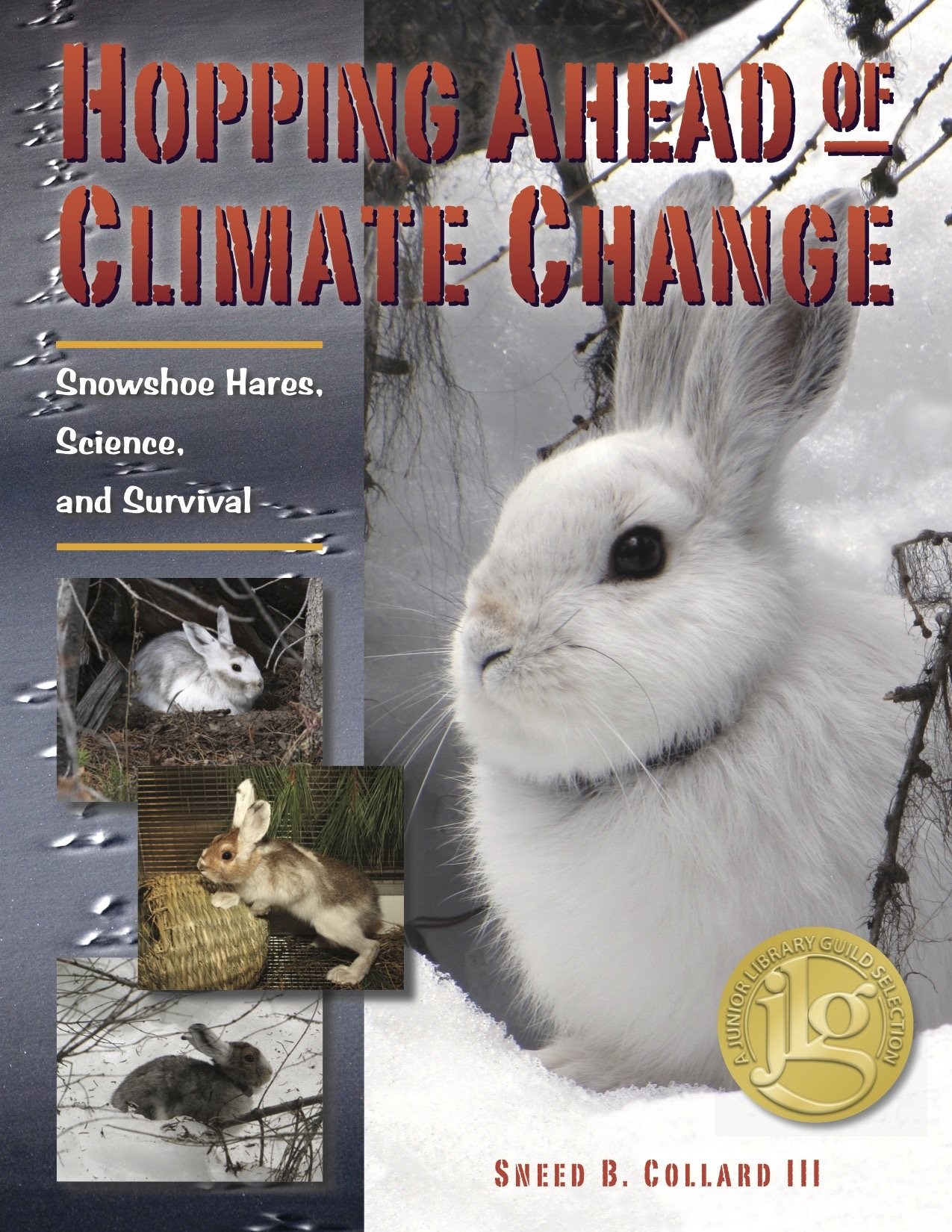 Hopping Ahead of Climate Change: Snowshoe Hares, Science, and Survival ebook