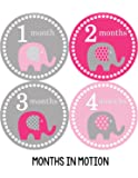 Months in Motion 246 Monthly Baby Stickers Baby Girl Elephants Months 1-12 Milestone Sticker in pink