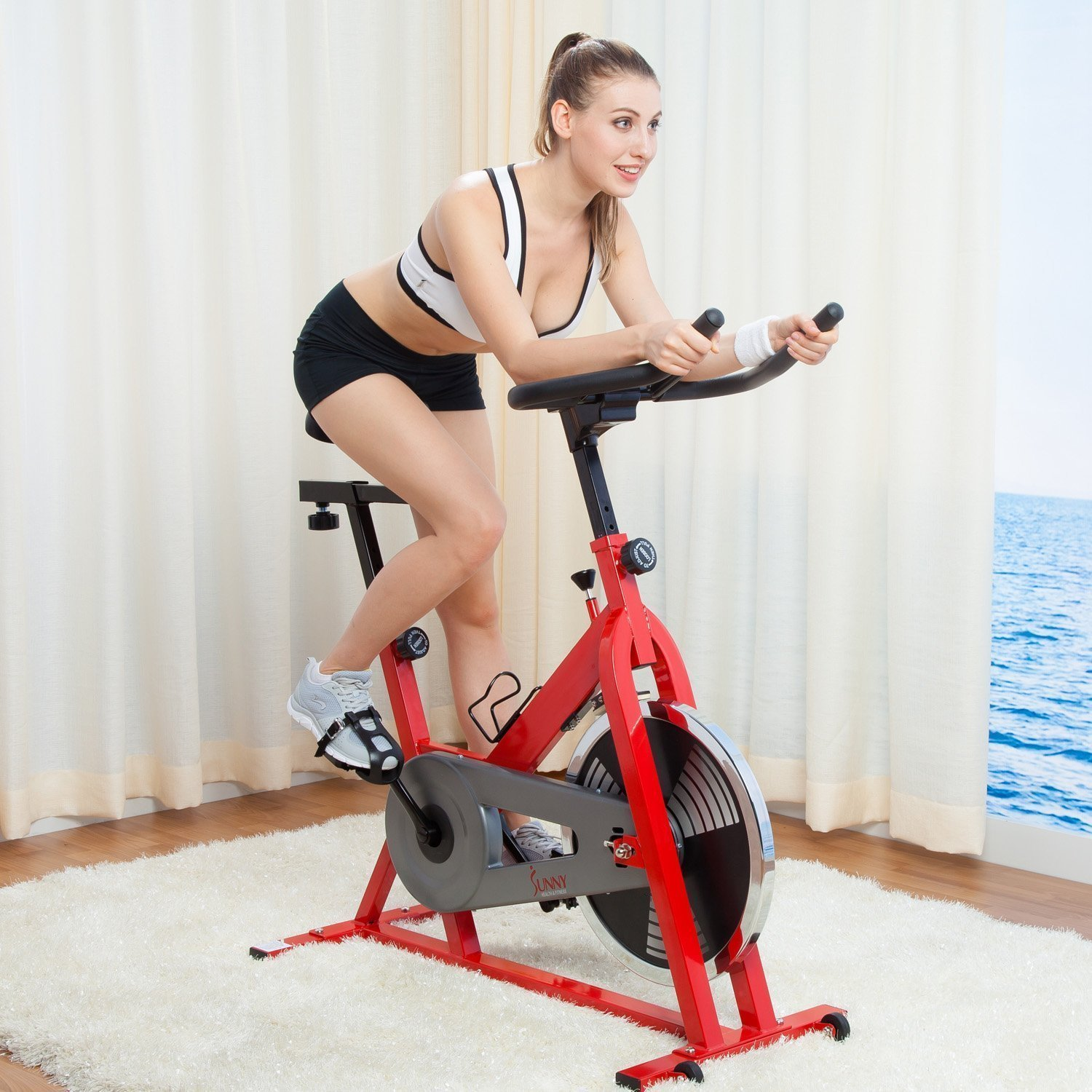 Sunny Health SF-B1001 Indoor Cycling Bike Review