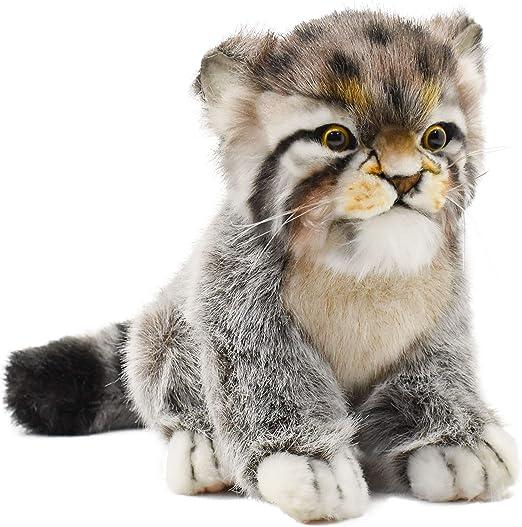 マヌルネコ マヌルネコの「レフ」が転出し、新たな個体が来園します|新着のお知らせ|東山動植物園