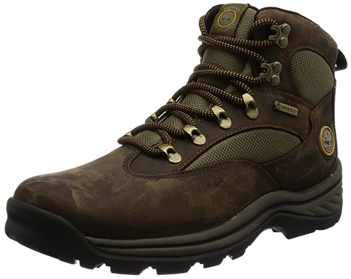 Amazon.com | Timberland Men's Chocorua Trail Gore-Tex Mid Hiking ...