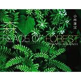 森 PEACE OF FOREST