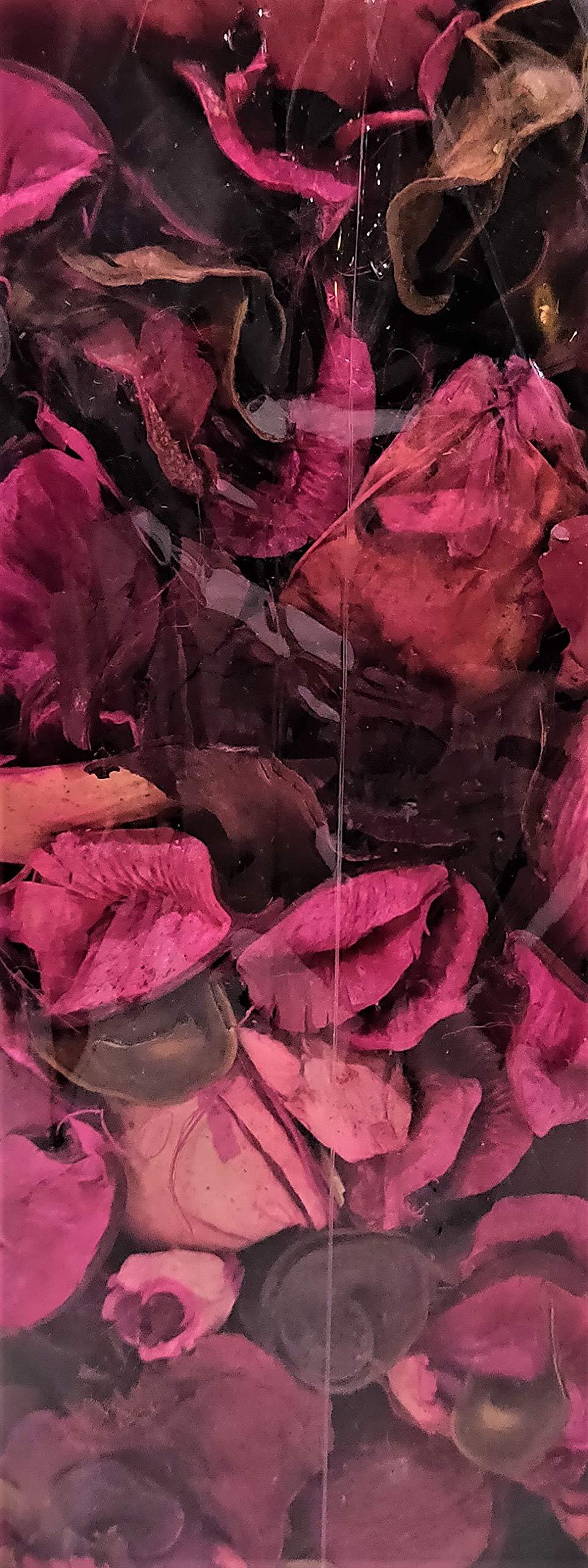 Beautiful Season Decorative Potpourri Bag - 8oz - Rose Petal by Beautiful Season (Image #2)