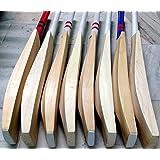Wonberry Plain Big Edge Big Spine English Willow Cricket Bat 7+ Grains Full Size W Cover
