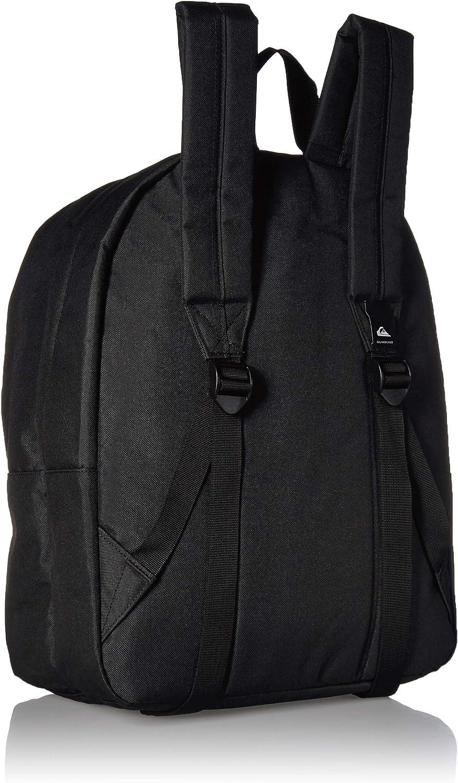 Quiksilver Men's Everyday Poster Double Backpack
