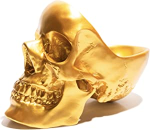 Modern Resin Skull Organizer, Skull Decorations Home Decor, Desk Pen Organizer, Storing Keys, Jewellery, Stationary, Spare Coins, Cosmetics or Accessories Home Office Desk Supplies