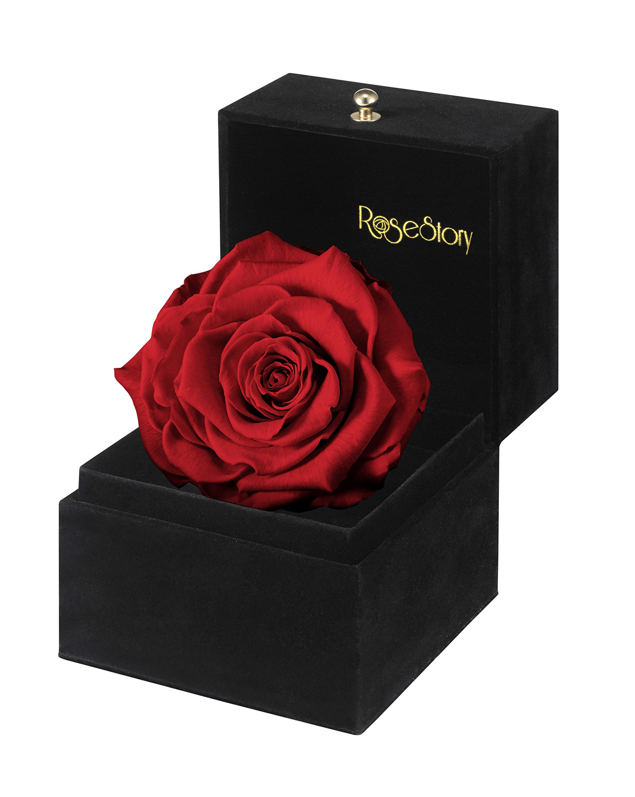 RoseStory|4'' Red Rose Gift Box-Valentine's Day Gift, Anniversary Gift, Birthday Gift, Unique gift Idea for Her by Rose Story
