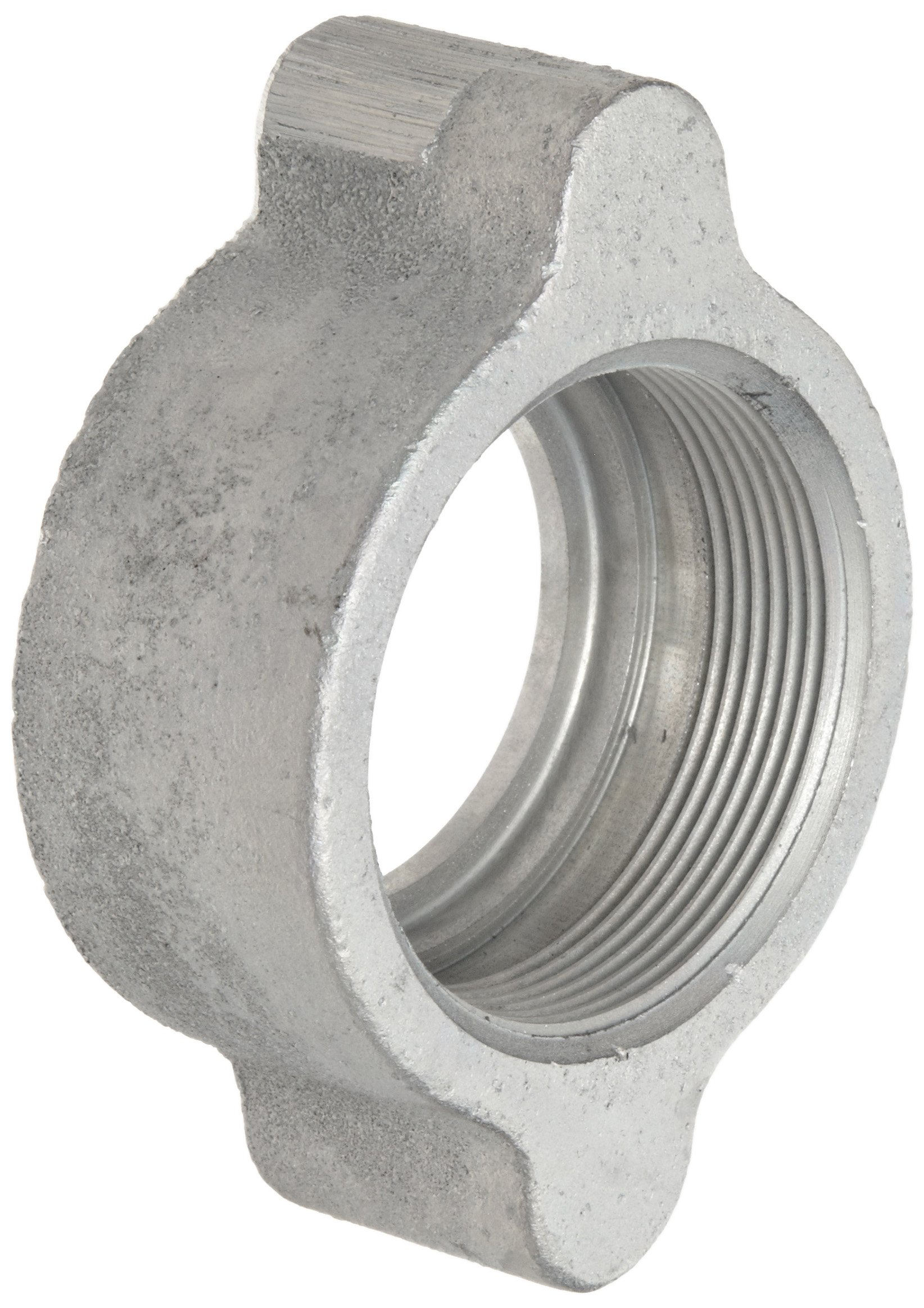 Dixon Boss B17 Plated Iron Hose Fitting, Wing Nut for 1-1/4'' and 1-1/2'' Boss Washer Seal and GJ Boss Ground Joint Seal